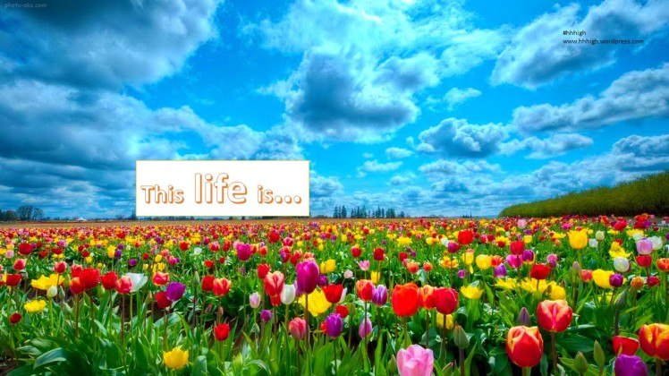 The life is