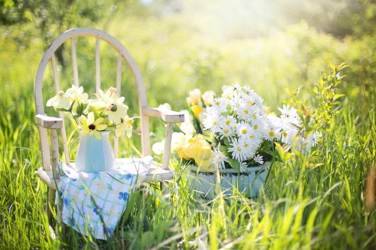 summer-still-life-779386_1920