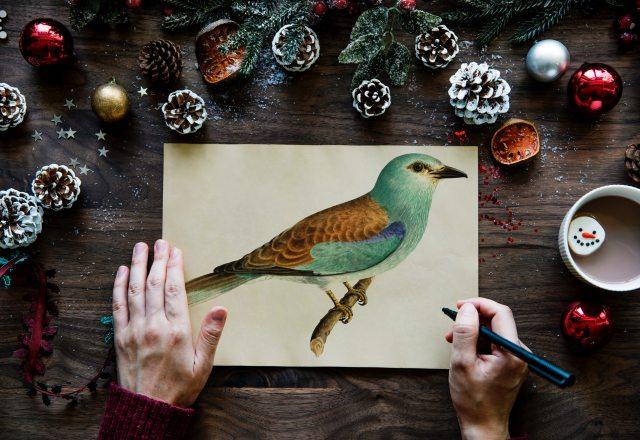 art-background-bird-891676.jpg