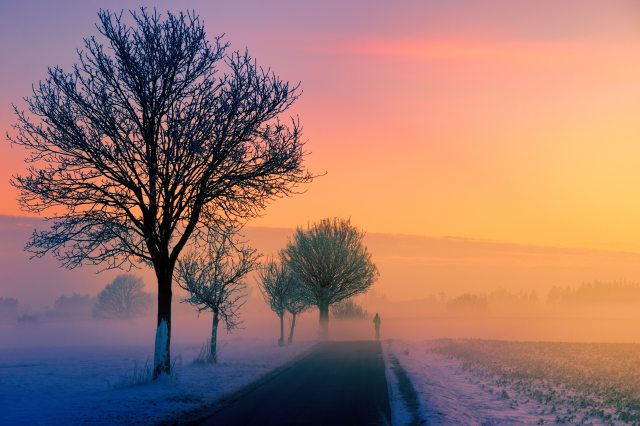 cold-dawn-outdoors-1114880.jpg