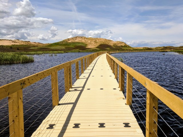 boardwalk-over-water_4460x4460